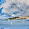 Dark Clouds Threaten Derwent River Sailing Fleet