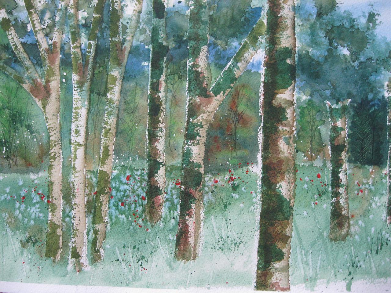 #6 Birch Tree Forest