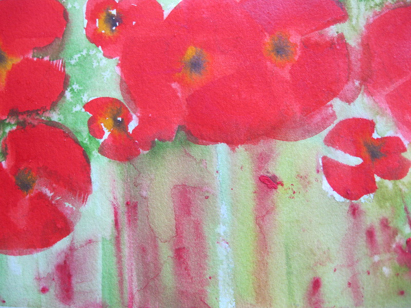 #23 Passionate Poppies
