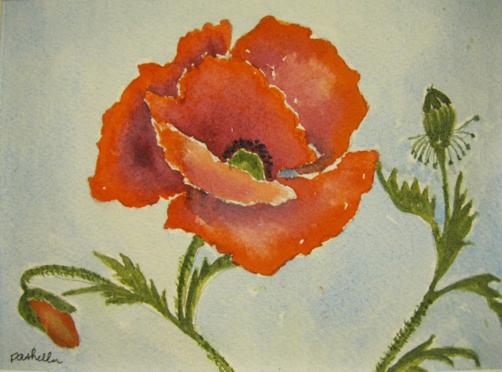 #75 Gorgeous Poppy