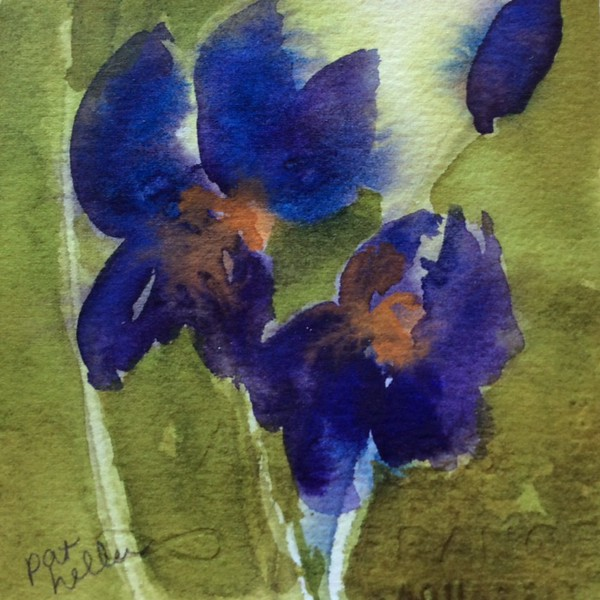 #60 Pop of Pansies (2)
