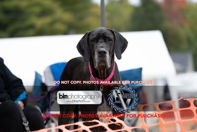 Northeast Watercross Championship  NEWC_Watercross_Sunday-5398_09-27-20  ©Rapid Velocity Photo & BLM Photography 2020