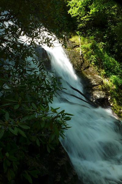 Ammons Branch Falls