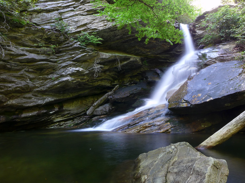 Unnamed Waterfall on the Yellow Fork of Paddy Creek