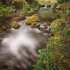 Calming Stream