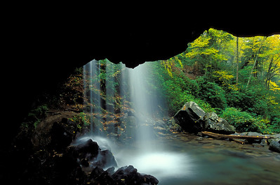 Grotto Falls In Great Smoky Mountains National Park