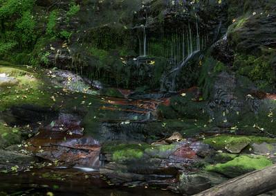 Falls Brook Falls