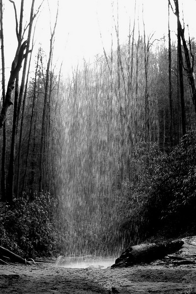 'Solo Rain'<br /> Pisgah National Forest, NC