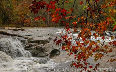 Cedar Falls @ Greenville County S.C.