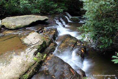 Going down Reedy creek!