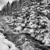 Colorado stream in winter
