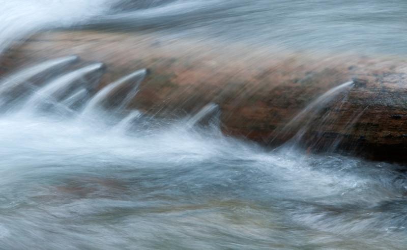 """Leaky Log"" - Avalanche Creek, Glacier National Park, Montana"