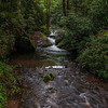 Indian Creek - GSMNP, Swain County, NC