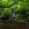 Toms Branch Falls & Deep Creek, GSMNP, Swain County, NC