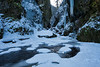 Frozen Oneonta
