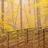 Bulle Rock Bridge in Fall