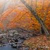 Bulle Rock Stream - Havre de Grace, MD