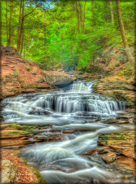 """""""Spring Flow"""" at Ricketts Glen State Park in PA"""