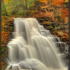 Erie Falls - Ricketts Glen State Park - PA