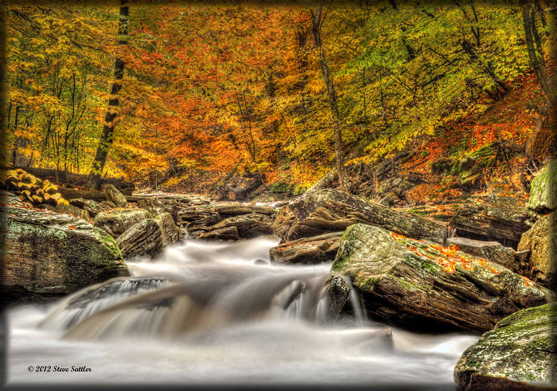 Rushing Water - Ricketts Glen State Park - PA