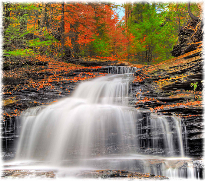 Cascading Waters - Ricketts Glen State Park - PA