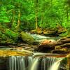 Rickett's Glen State Park - 1