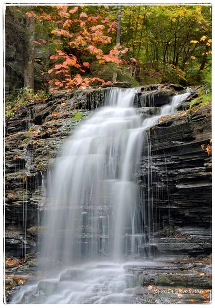 Ricketts Glen  - Fall 2014 - #2