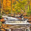 Cascading Waters 2 - Ricketts Glen State Park - PA