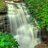 Rickett's Glen State Park - 2