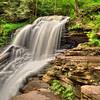 Rickett's Glen State Park - 8