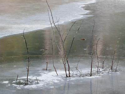 Ice on South Yuba Creek
