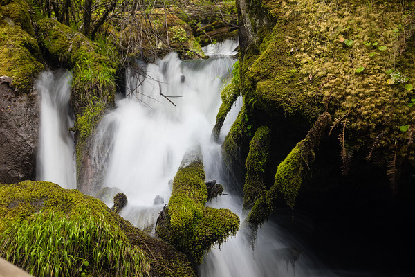 Watson Creek