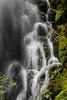 Upper Fall Creek Falls