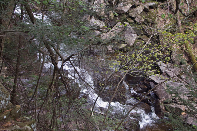 It is a steep hike up the side of Otis falls, but the views are gorgeous.