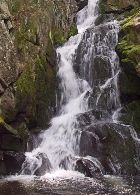 Goldmine Brook falls