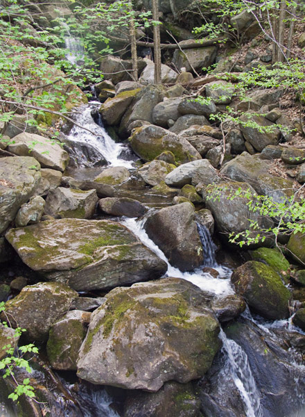Goldmine Brook falls is in Hamden county, near the Berkshires, just off the road. There are many cascades above the falls.