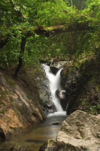 Upper Bocawina Falls at Mayflower Bocawina National Park.