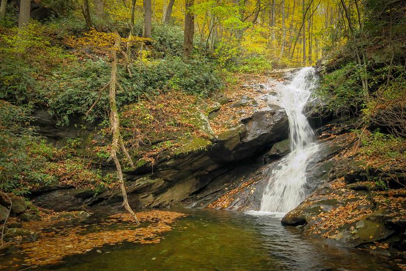 78. Shuck Ridge Creek Falls, NC