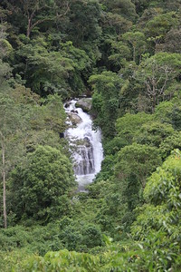 Cloudbridge Falls