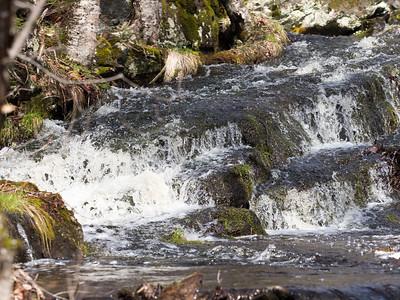 Bacco Falls Region