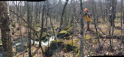 Bacco Falls on Bacco Creek