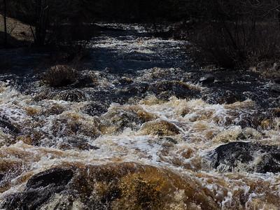 Tioga Falls Region