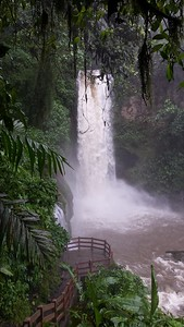 Magia Blanca Waterfall in the Rain