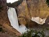 YellowstoneFalls08