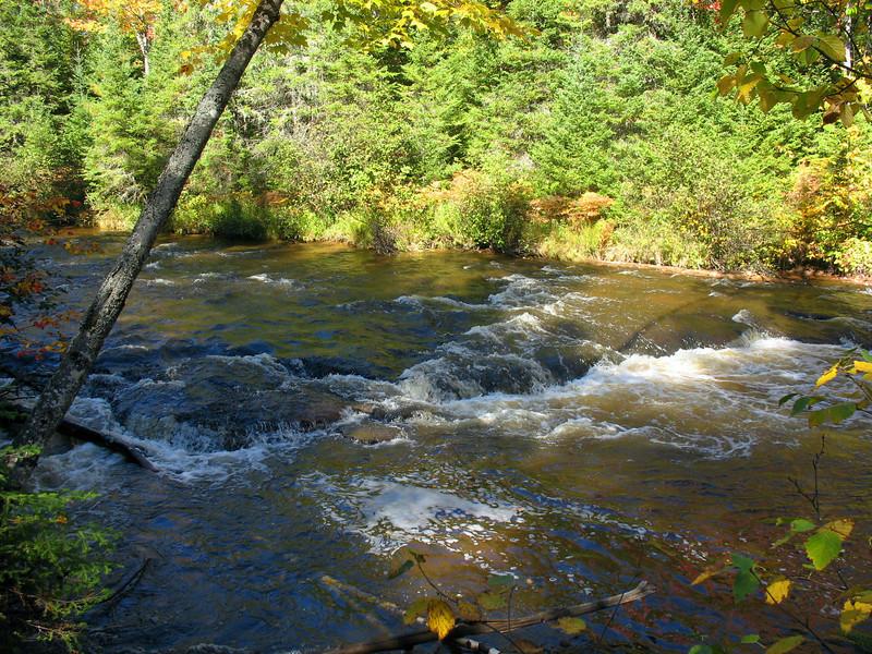 Sparrow Rapids