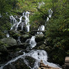 Catawba Falls, Lower