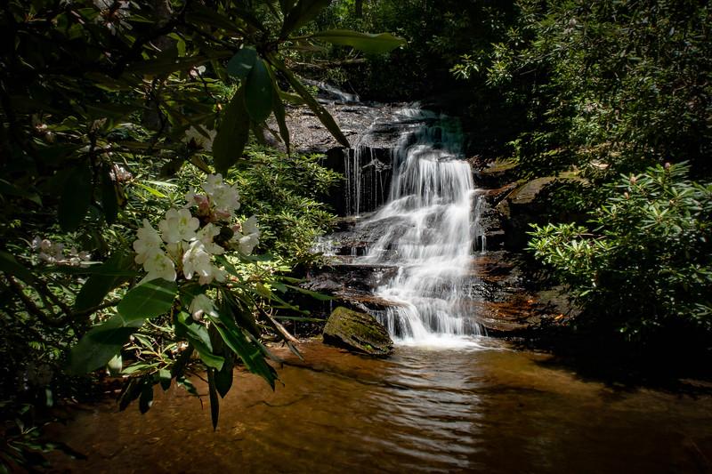 Billy Branch Falls