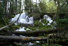 ClearwaterFalls1