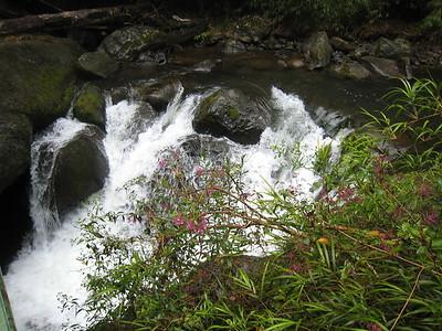 Savegre Mountain Lodge Waterfall