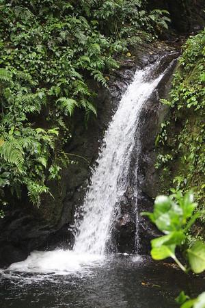 Monteverde San Luis Waterfall
